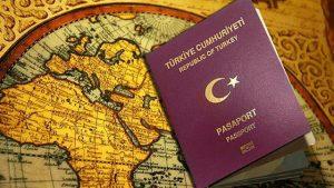 pasaport-nasil-alinir